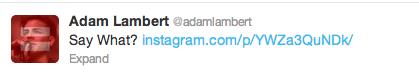 AdamTweet-042013