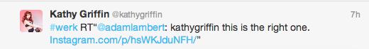 KathyGriffinWerk