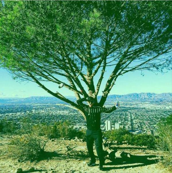 adamlambert: California Christmas Tree